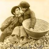 picciocus de crobi