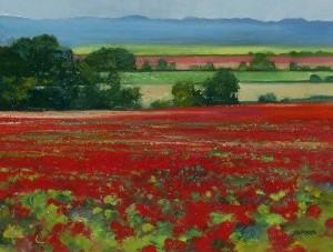 Howard Behrens - poppy field