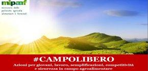campolibero_legge_notizia3_4