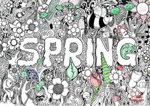 Spring Bomeluzo 2015