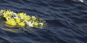 fiori naufragio-migranti