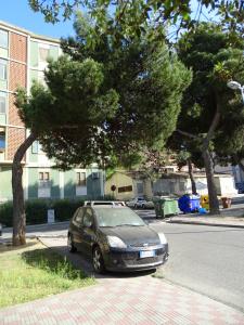 Gotttardi 3 stefano_piazzetta-albero