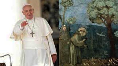 papa Francesco Laudato si