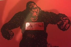 gorilla bayer cq