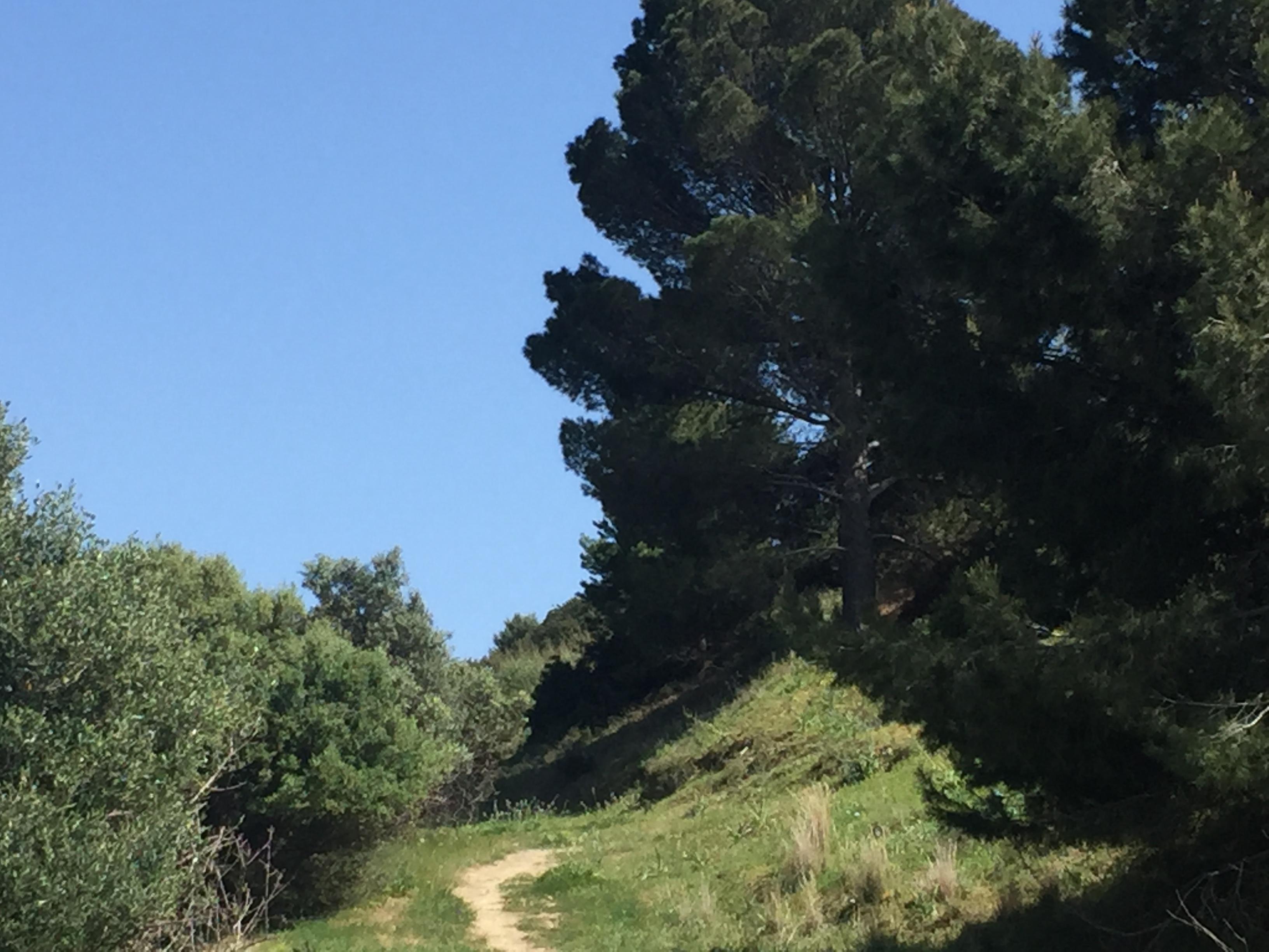 """Oggi a Nuxis percorriamo il """"Cammino della Libertà"""" nei luoghi della latitanza del capo della Rivolta di Palabanda"""