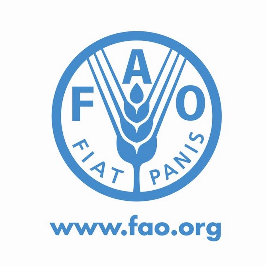fao-1
